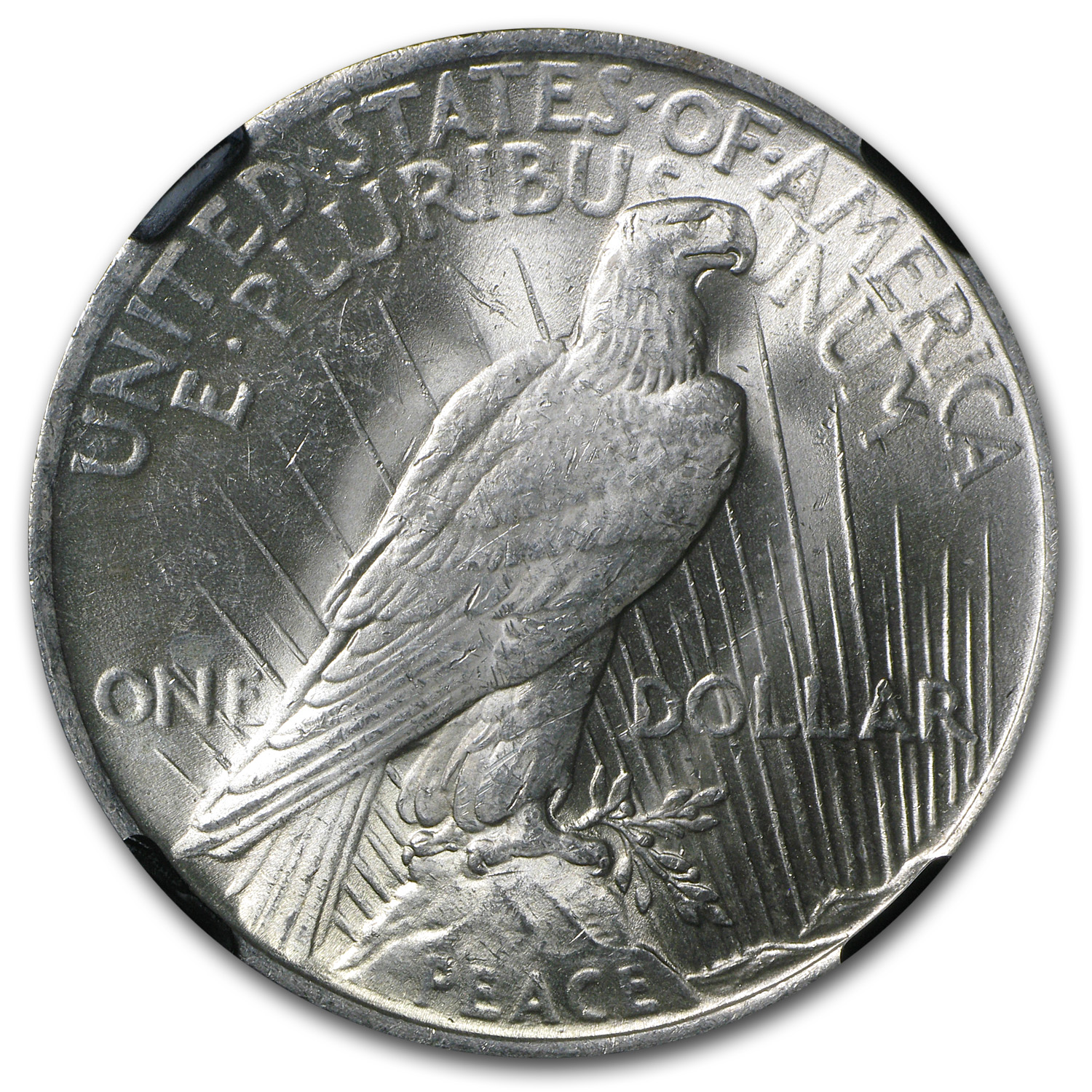 1923 Peace Dollar MS-63 NGC - Beautifully Toned CAC